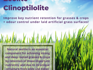 Zeolite Clinoptilolite: an excellent choice for healthier and stronger grasses & crops